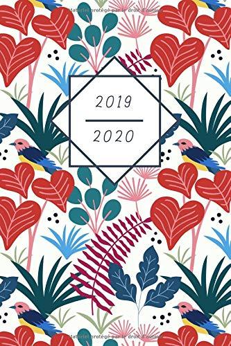 Mon Calendrier, Agenda, Organisateur 2019-2020: La magie de la botanique - Planning hebdomadaire | Planificateur de rendez-vous | Calendrier de poche ... Tracker pour plus de routine au quotidien par  Cadeaux d'Alain et Chloé