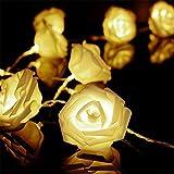Redlution 2m 20er LED Rosen Lichterkette Batteriebetrieben Innen Im Freien warmweiße Beleuchtung für Garten Rasen Bar Verein Hochzeit Valentinstag Weihnachten