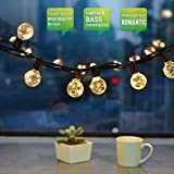 30 LED 10M G40 Globe String Fairy Lights, CroLED Decorative Globe String Lights, IP65 Waterproof, 30+1 Edison Light Bulbs, WarmWhite, Durable Festoon String Lights, Home Outdoors Party Night Christmas