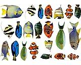 Fischaufkleber Set Wandtattoo 22 teiliges Sticker Set mehrfarbig