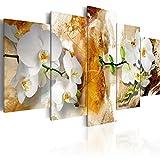 murando - Cuadro en Lienzo 200x100 cm - Flores - Impresion en calidad fotografica - Cuadro en lienzo tejido-no tejido - Orquidea b-A-0255-b-p