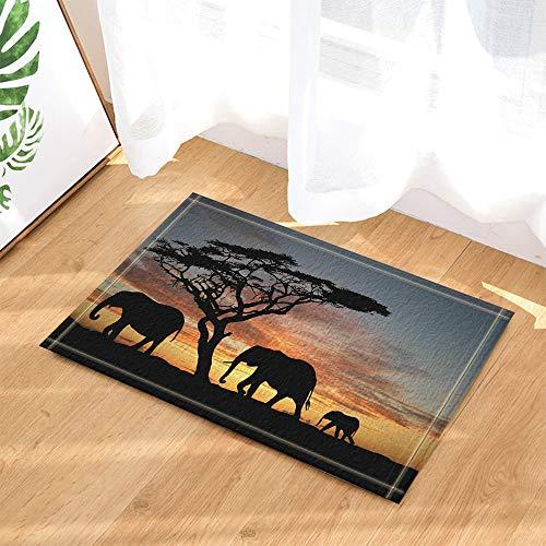 SRJ2018 Vista Posterior de Dos Elefantes y un bebé Elefante Caminando en...