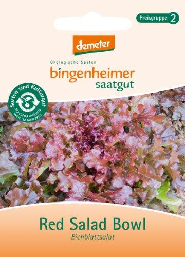 Bingenheimer Saatgut - Pflücksalat Eichblattsalat Red Salad Bowl - Gemüse Saatgut / Samen Red Salad Bowl