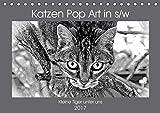 Katzen Pop Art in s/w - Kleine Tiger unter uns (Tischkalender 2017 DIN A5 quer): Unsere Lieblinge einmal in einer