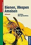 Bienen, Wespen, Ameisen: 130 Arten 430 Farbfotos (Kosmos-Naturführer)