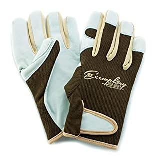Leather Gardening Gloves for Women and Men. Adjustable Fastener and Breathable Spandex Back. Ideal for General Garden Tasks (Small)