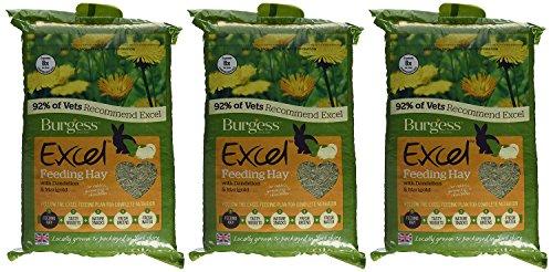 Burgess Excel Forage Dried Grass, 1 kg 2