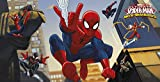Kunststoff Wand-Dekoration mit coolem Ultimate Spiderman Motiv. Größe: 77cm x 150cm