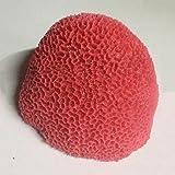LDFN Coral Simulación Bola Roja Paisajismo Pecera Acuario Decorativo Vida Marina 14-18cm,Red