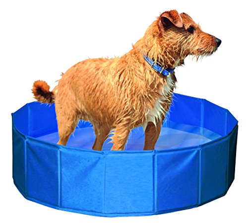 Kerbl 82262 Hundepool 120 cm, Höhe 30 cm