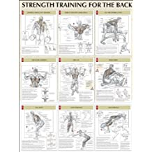 Back Poster (Strength Training Anatomy)