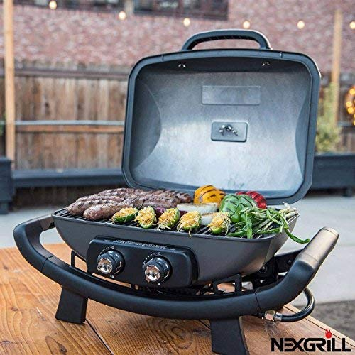 Nexgrill 2 Burner Cast Aluminium 19