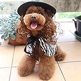Jiyaru Capa de leopardo Sombrero para mascotas para perros gatos Asiático S Raya cebra