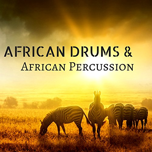 African Drums & African Percussion - Traditional Conga Drumming, Music Festival