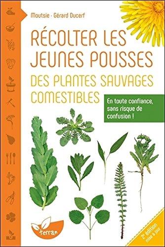 Récolter les jeunes pousses des plantes sauvages comestibles