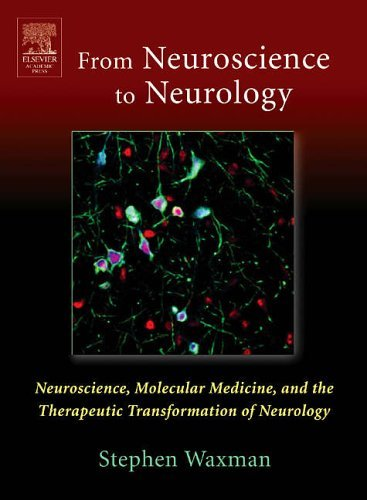 From NEUROSCIENCE To NEUROLOGY: Neuroscience, Molecular Medicine, and the Therapeutic Transformation of Neurology by Stephen Waxman (2004-11-05)