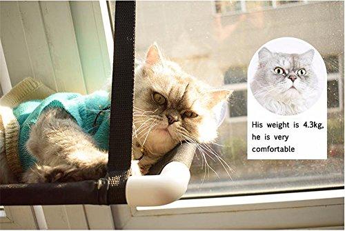 Amaca Per Gatti, Appendere Il Letto Per Animali Domestici Persico Montati Al Gattino Kitty Sunny Seat Confortevole Divano Lycra Resistente Con Grandi Ventose Carico Portante A 33 Lb 60 X 31 Cm Nero ,Singlelayer