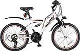 """20"""" 20 Zoll Kinderfahrrad MTB Mountainbike Vollgefedert Kinder Fahrrad Rad Bike Jugendfahrrad Viper ROT Weiss TYT19-011"""