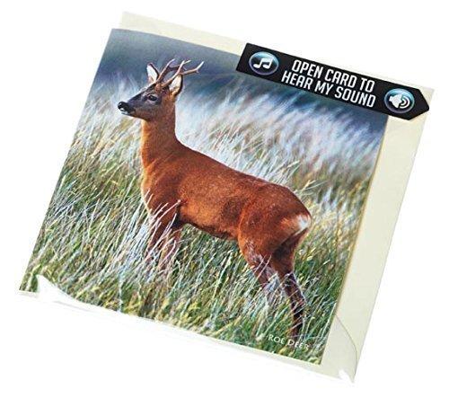 tarjeta-de-felicitacion-corzo-con-sonido-sonido-real-de-un-corzo-macho-perfecto-con-un-regalo-de-caz