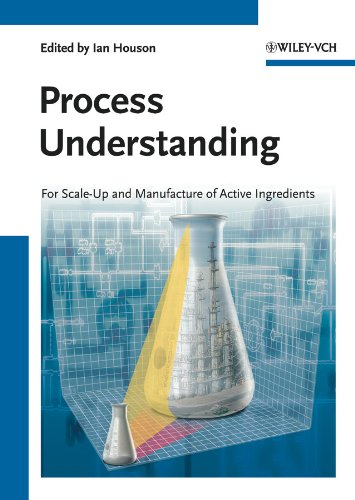 Process Understanding: For Scale-Up and Manufacture of Active Ingredients (English Edition)