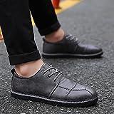 Feifei Hommes Chaussures Printemps Et Automne Loisirs Plaque De Mode Chaussures 3 Couleurs (Taille Choix Multiple) (Couleur : Gris, Taille : EU43/UK9/CN44)