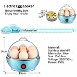 Diswa 350W 1L Electric Egg Boiler with Lid (Multicolour)