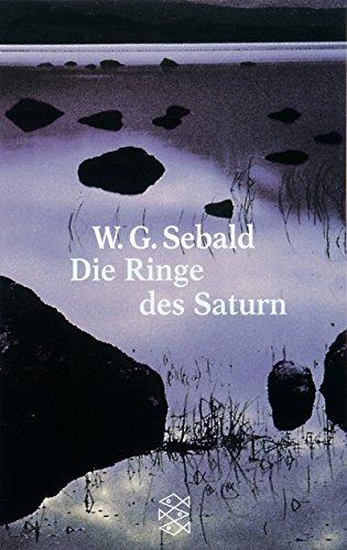 Die Ringe des Saturn (German Edition) by W G Sebald (2002-11-02)