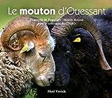 Image de Le mouton d'Ouessant
