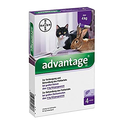 Advantage Flea Treatment 4x 0.8 ml 80 mg Cat and Rabbits