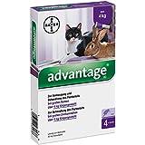 ADVANTAGE 80 mg f.gr.Katzen u.gr.Zierkaninchen 3.2 ml Lösung