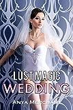 Lust Magic Wedding (MILF Merge Book 2)