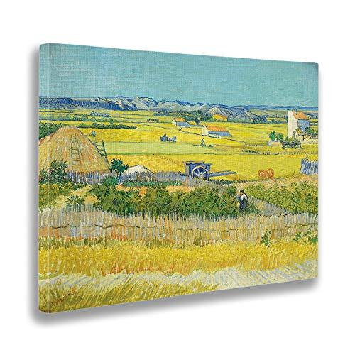 Giallobus - Cuadro - Vincent Van Gogh - La Coleccion - Estampado en Lienzo - Listo para Colgar - Varios tamaños 70x50 cm