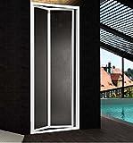 Duschtür für Nische Öffnung Zwei Türen Buch Aluminium silber matt und Acryl matt Wetlook h.185cm Boreas