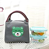 dyudyrujdtry Wonderful Insulated Canvas Box Tote Bag Thermal Cooler Food Lunch Bags(None GY 20.5 * 18 * 15cm)