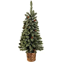WeRChristmas Craford Blue Pine Christmas Tree with Mini Pine Cones in a Gold Resin Pot, 3 feet - Green