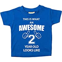 60 Second Makeover Limited This is What an Awesome 2 Year Old Looks Like Blue Tshirt 2nd Birthday Baby Toddler Kids Available in Sizes 0-6 Months t