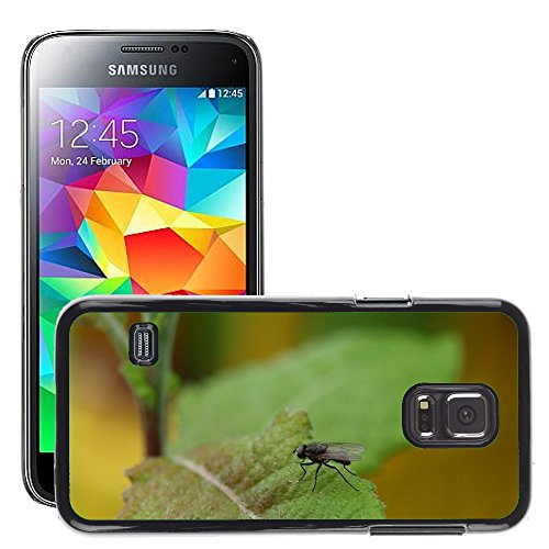 Just Phone Cover Bild Hart Handy Schwarz Schutz Case Cover Schale Etui // M00139077 Fly Insect Close // Samsung Galaxy S5 Mini SM-G800 (Fly Cover Samsung S5 Mini)