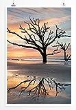 Eau Zone Home Bild - Landschaft Natur - Einsamer Baum im