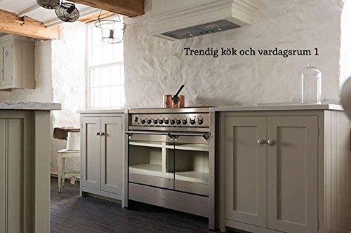 Trendig kök och vardagsrm 1 (Swedish Edition) por N Matsuura