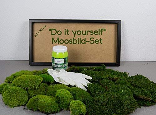 DIY Moosbild selber Machen, Wandbilder selber kleben, Moosbilder selber gestalten, Do it Yourself Set Moos kleben Wanddeko selbst herstellen (Schwarz, 60x30 cm)