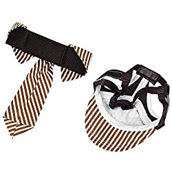 Petacc Dog Baseball Hat and Necktie Set Adjustable Pet Hat and Necktie Cotton Dog Necktie, Stripe Pattern, Suitable for Medium and Large Pets like Golden Retriever, Husky and Samoyed, Coffee, L from Petacc