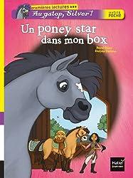 Un poney star dans mon box