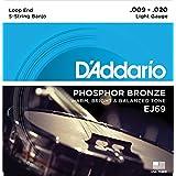 D'Addario EJ69 luz bronce fósforo - 20 9 5-cuerdas con extremo de bola de pared para