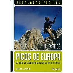 Escaladas Fáciles En Los Picos De Europa (Guias De Escalada)