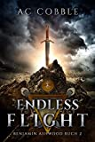 Endless Flight: Benjamin Ashwood Buch 2