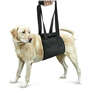 Lalawow Supporto Del Cane Imbracatura Per Cani Per Lesioni Gambe Inferiori Delle Gambe Articolazioni Chirurgia Riabilitazione (Nero, M (22-55lb/10-25kg))