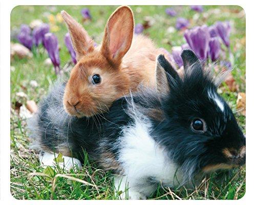 due-simpatici-conigli-motivo-45-animali-mousepad-cartolina-qualita-tappetino-per-mouse-in-caucciu-re