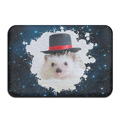 Soft Non-Slip Hats of Hedgehog Bath Mat Coral Fleece Area Rug Door Mat Entrance Rug Floor Mats