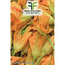 ❦ 40 C.ca Semi Zucchino da fiori - Cucurbita Pepo In Confezione Originale Prodotto in Italia