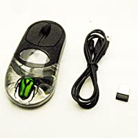 Wireless USB reale rose Chafer Beetle Insect mouse ottico per